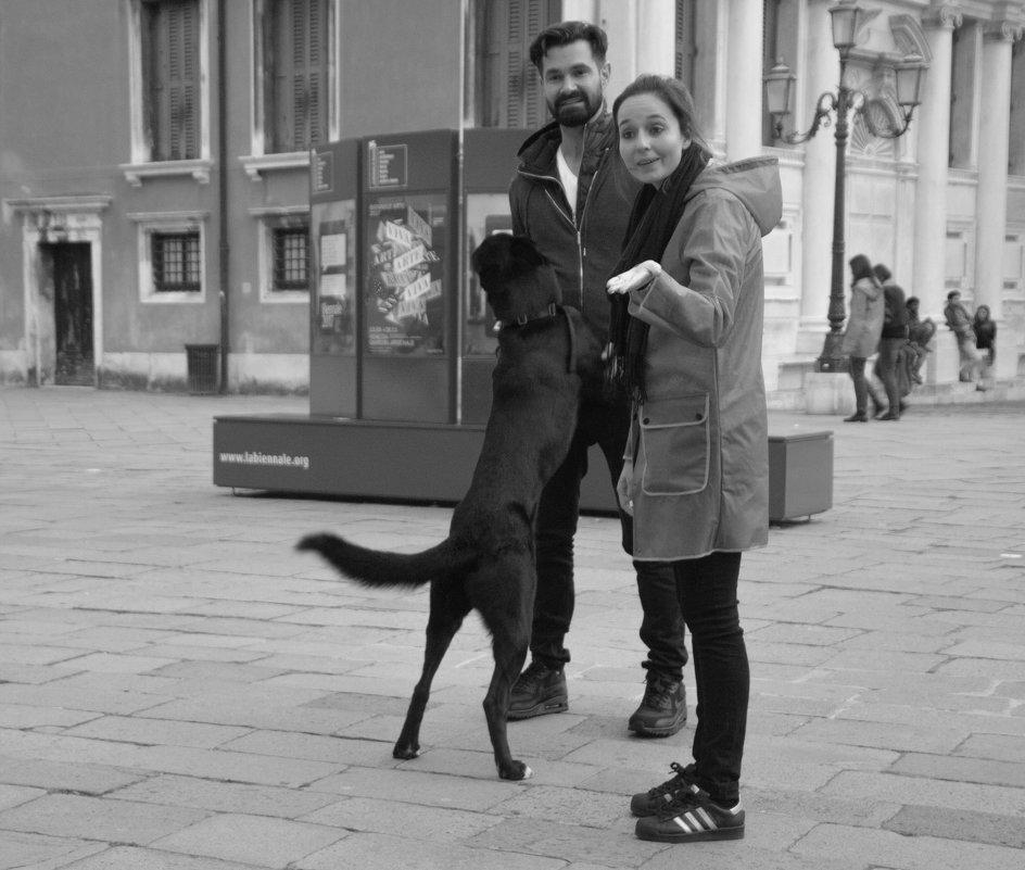 Это ваша собака? - liudmila drake