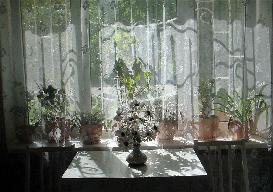 Игра света и тени в День Победы - Нина Корешкова