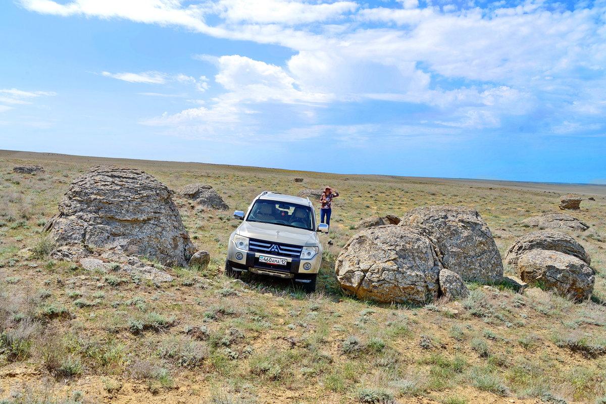 Долина камней - Анатолий Чикчирный
