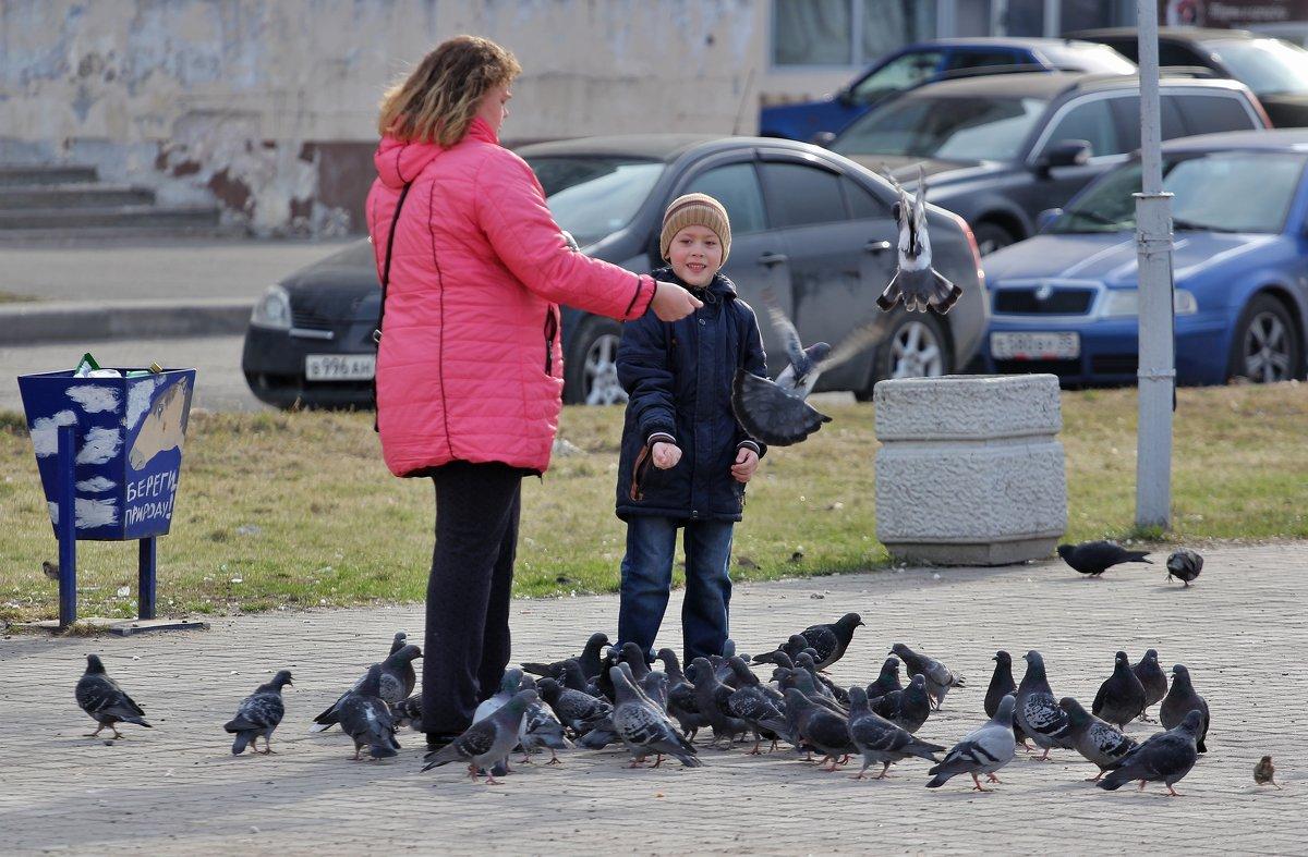 Любовь и голуби...) - VADIM *****