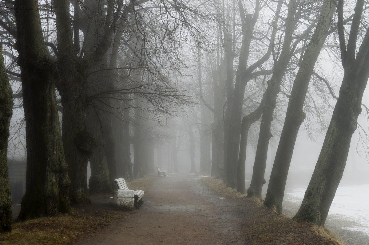 В тумане утреннем.... - Юрий Цыплятников