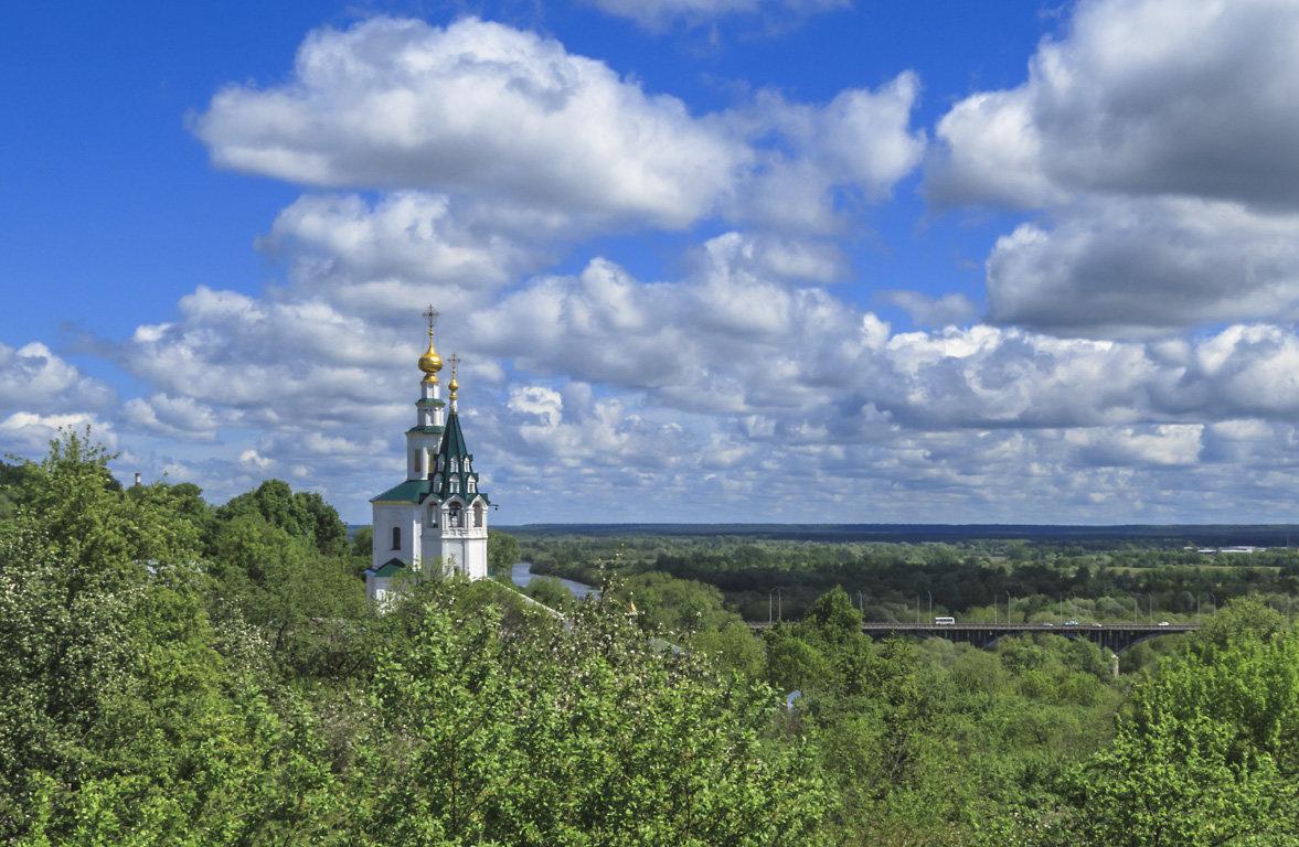 Владимир,утопающий в зелени - Сергей Цветков