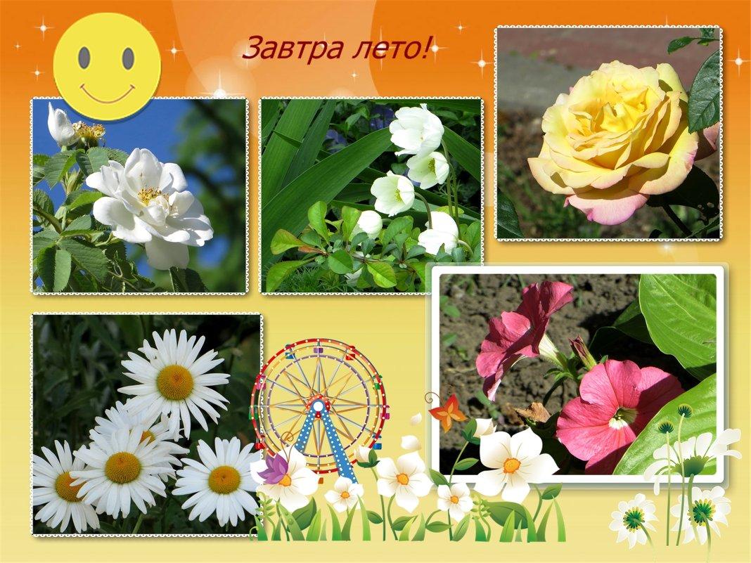 Завтра лето! - Татьяна Смоляниченко