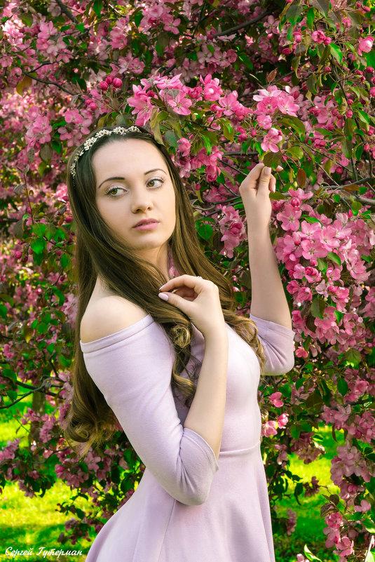 Цветущий май - в яблоневом цветении. - Сергей Гутерман