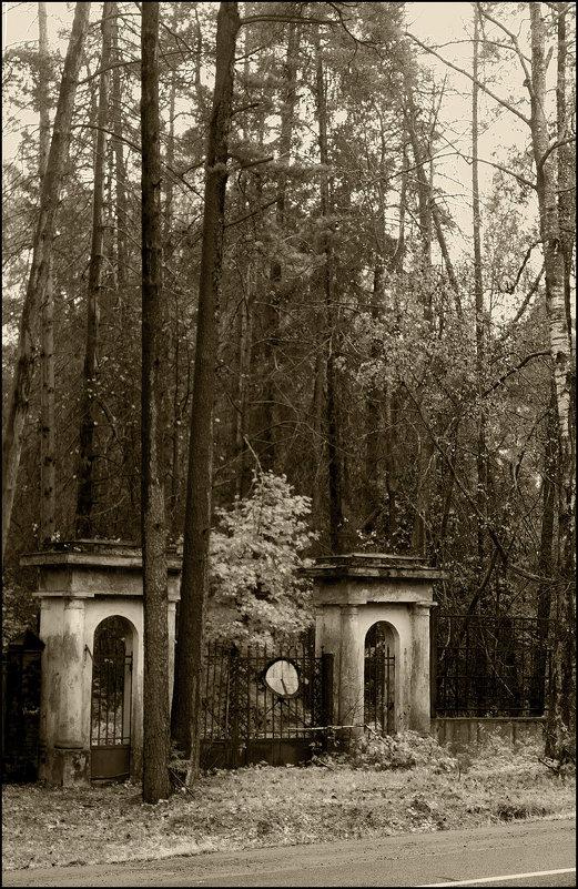 Старе ворота - antip49 antipof