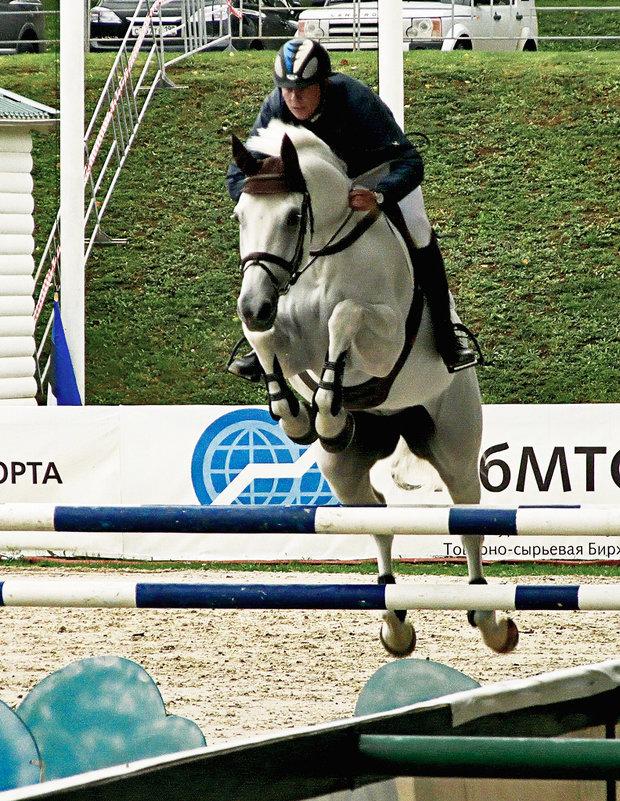 И конь взлетает.  как Пегас - Vera Ostroumova