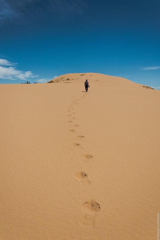Белое солнце пустыни - Георгий Ланчевский