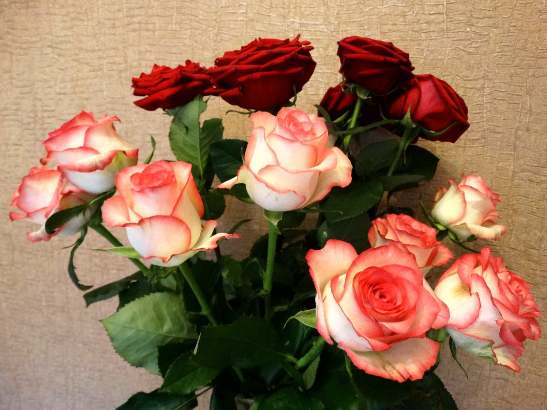 Розы в букете... - Тамара (st.tamara)