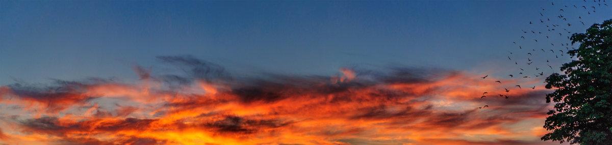 Подсвеченные солнцем пылали облака На землю проливали свой свет издалека... - Анатолий Клепешнёв