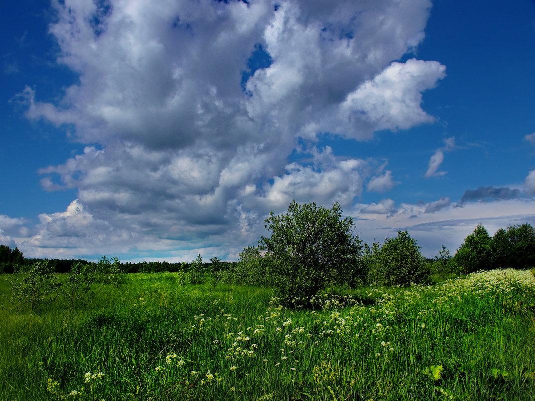 Летние облака - Лара Симонова