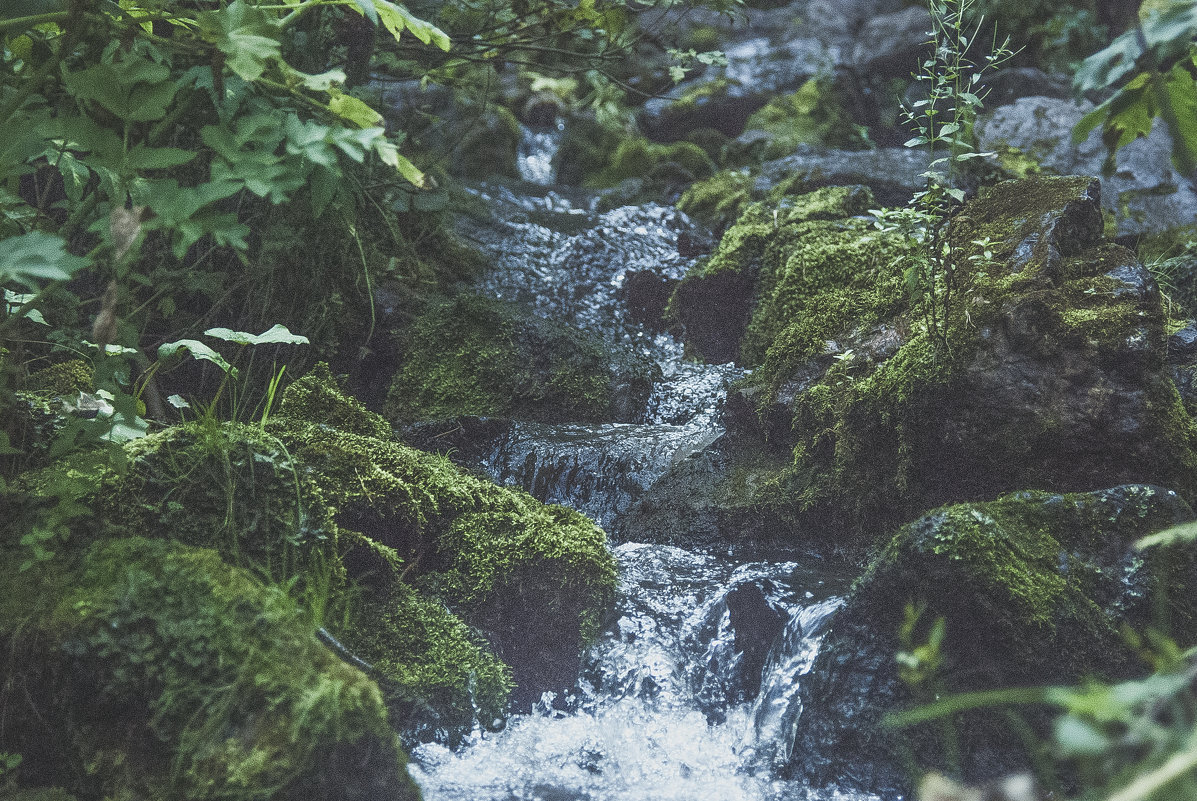Вода падает - Иван Пархутов