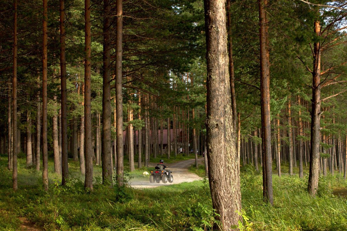 База отдыха Малая Медвежка - Анжела Пасечник
