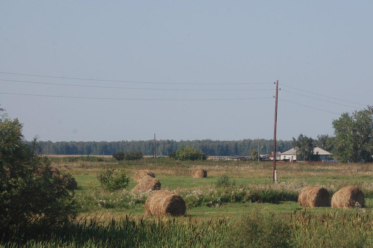 Сельский вид - Надежда