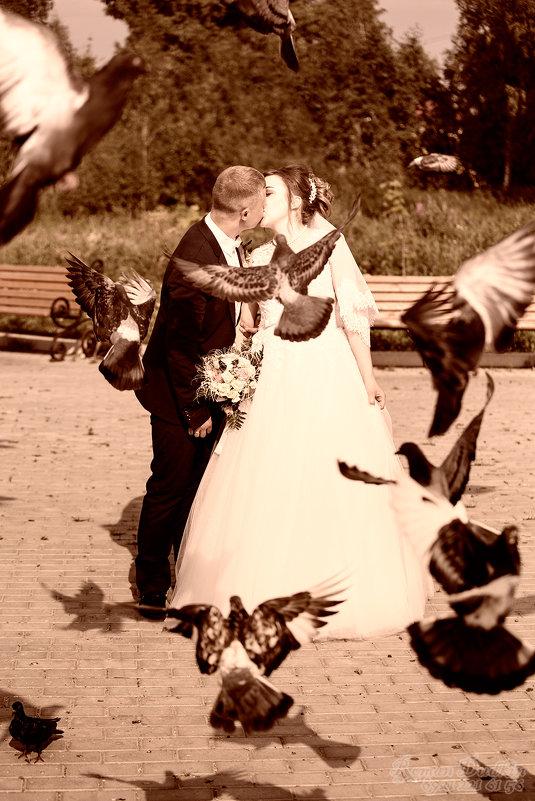 Какая свадьба без голубей - Роман Дудкин