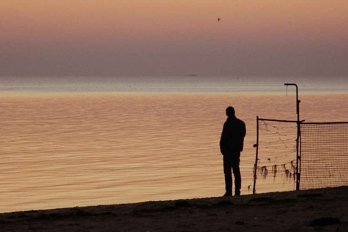 Вечернее наблюдение за полетом одинокой чайки - Александр Бурилов