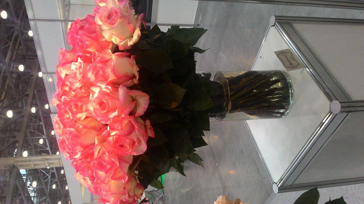 Выставка цветов - Светлана
