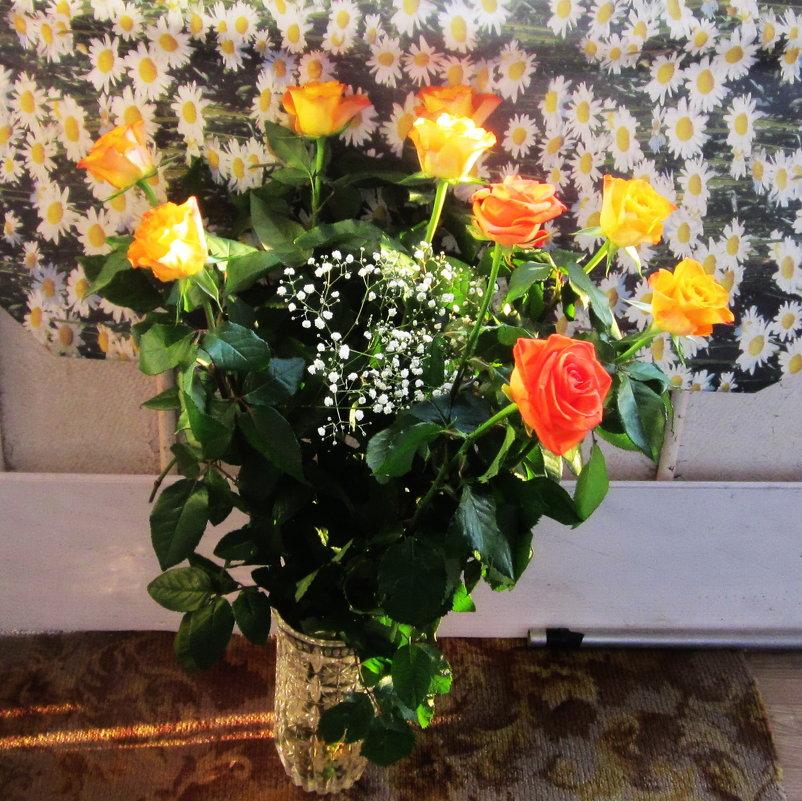 Розы на фоне ромашек - татьяна