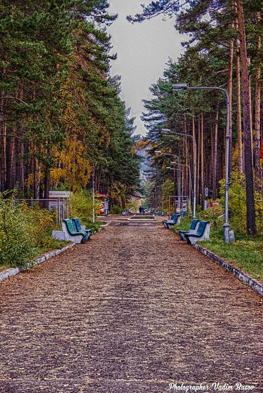 Аллея парка. - Вадим Басов