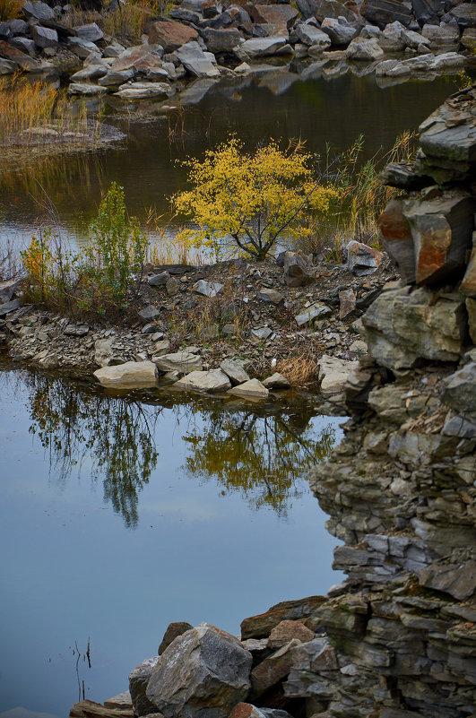 Зуевский ландшафтный парк, Донецкая Народная Республика - Вера Корниенко