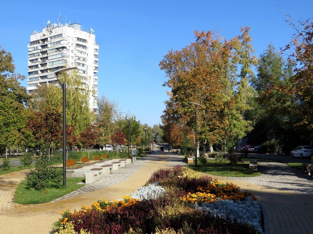 Главный сквер города - Татьяна Смоляниченко