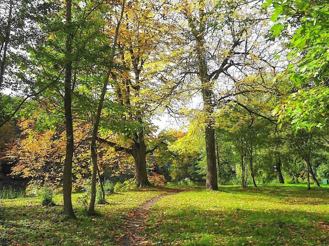 Парк Южный в красках октября - Маргарита Батырева