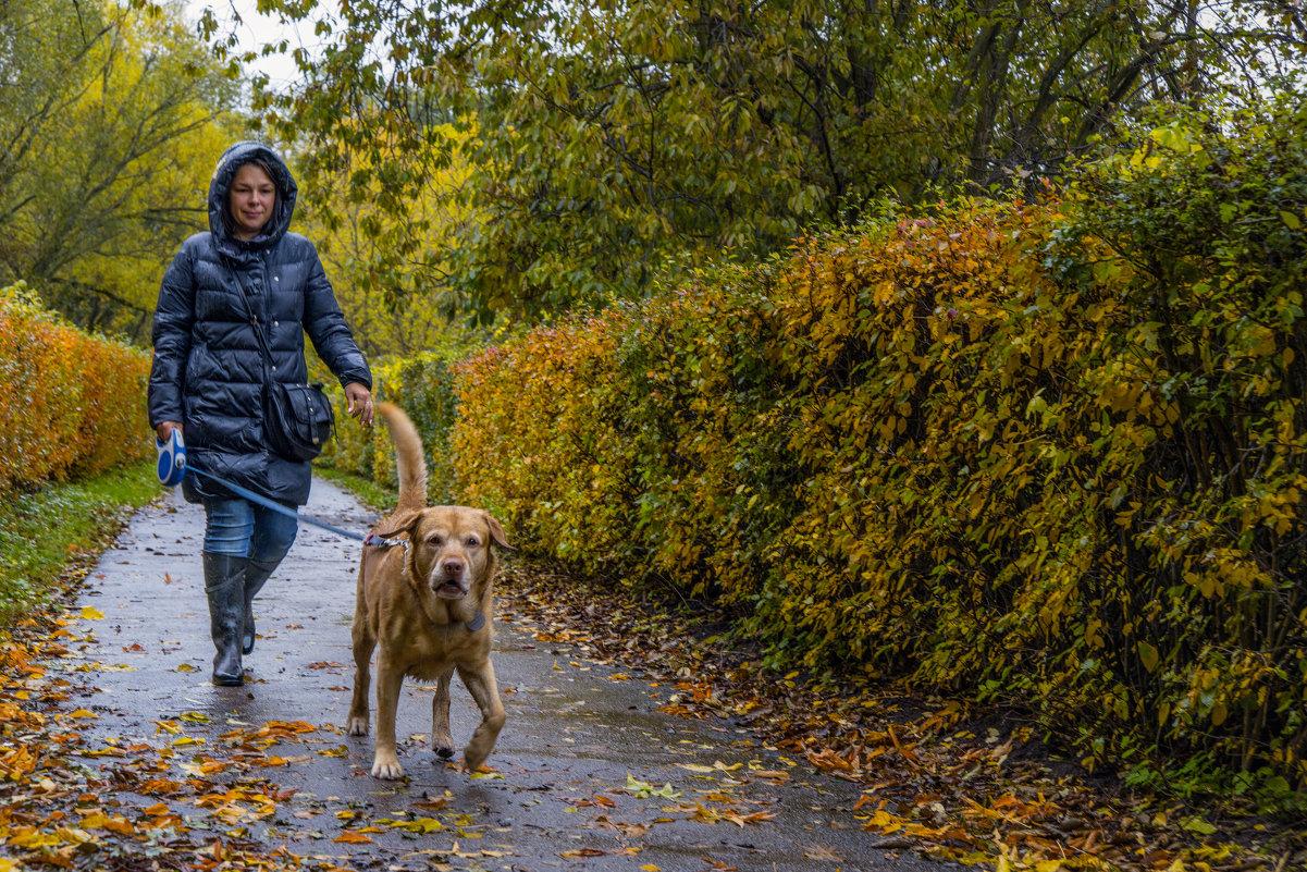 Человек собаке друг - Борис Гольдберг