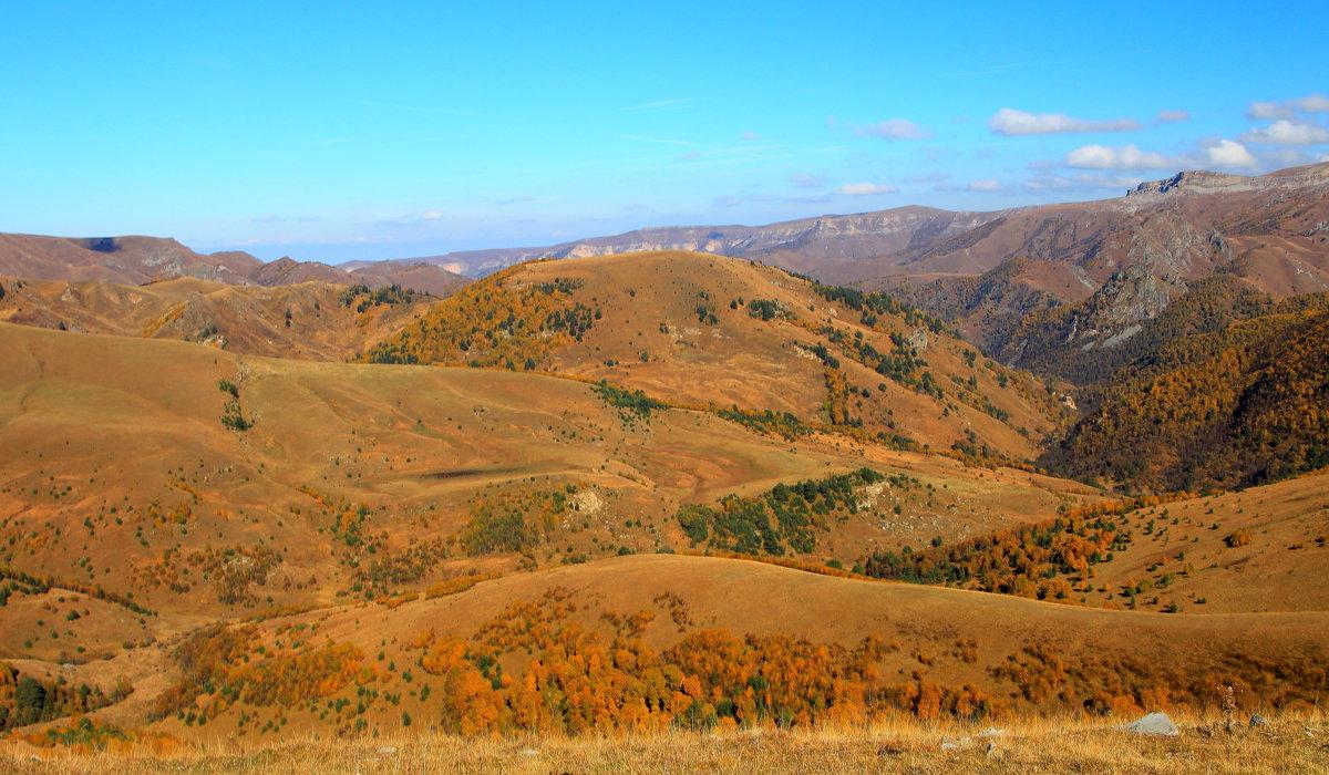 Золотая осень на плато Бийчесын. Высота более 2000м. - Vladimir 070549