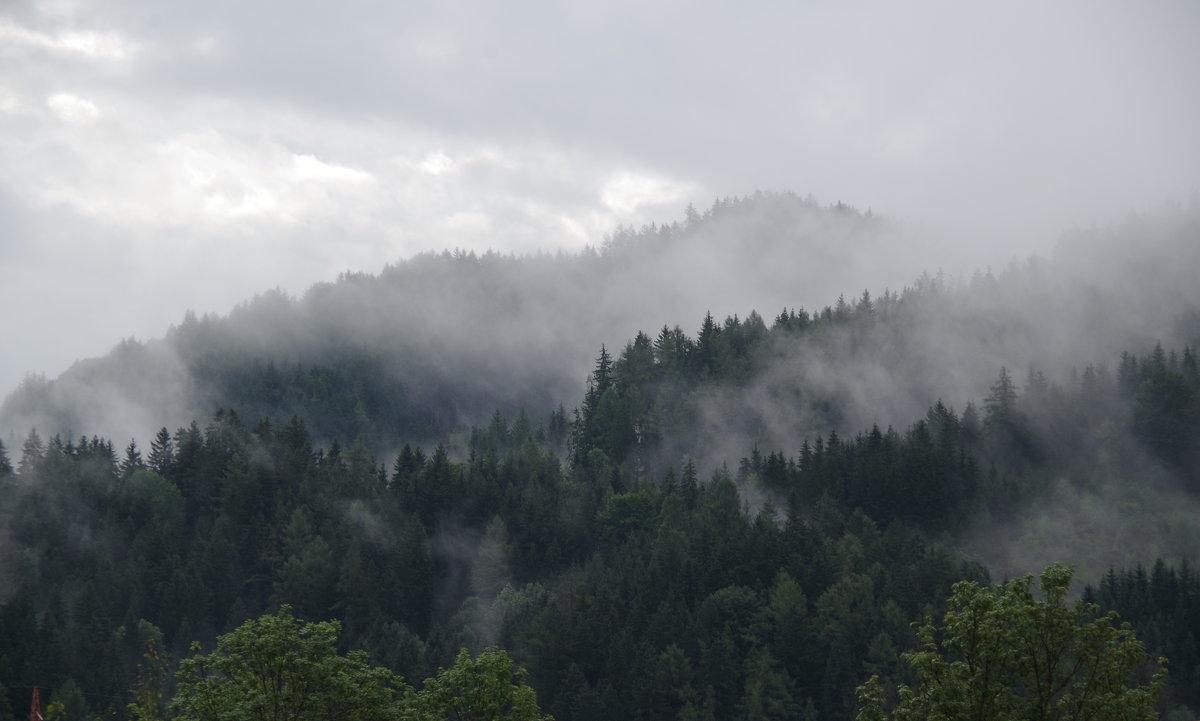 Туманы - Andrad59 -----