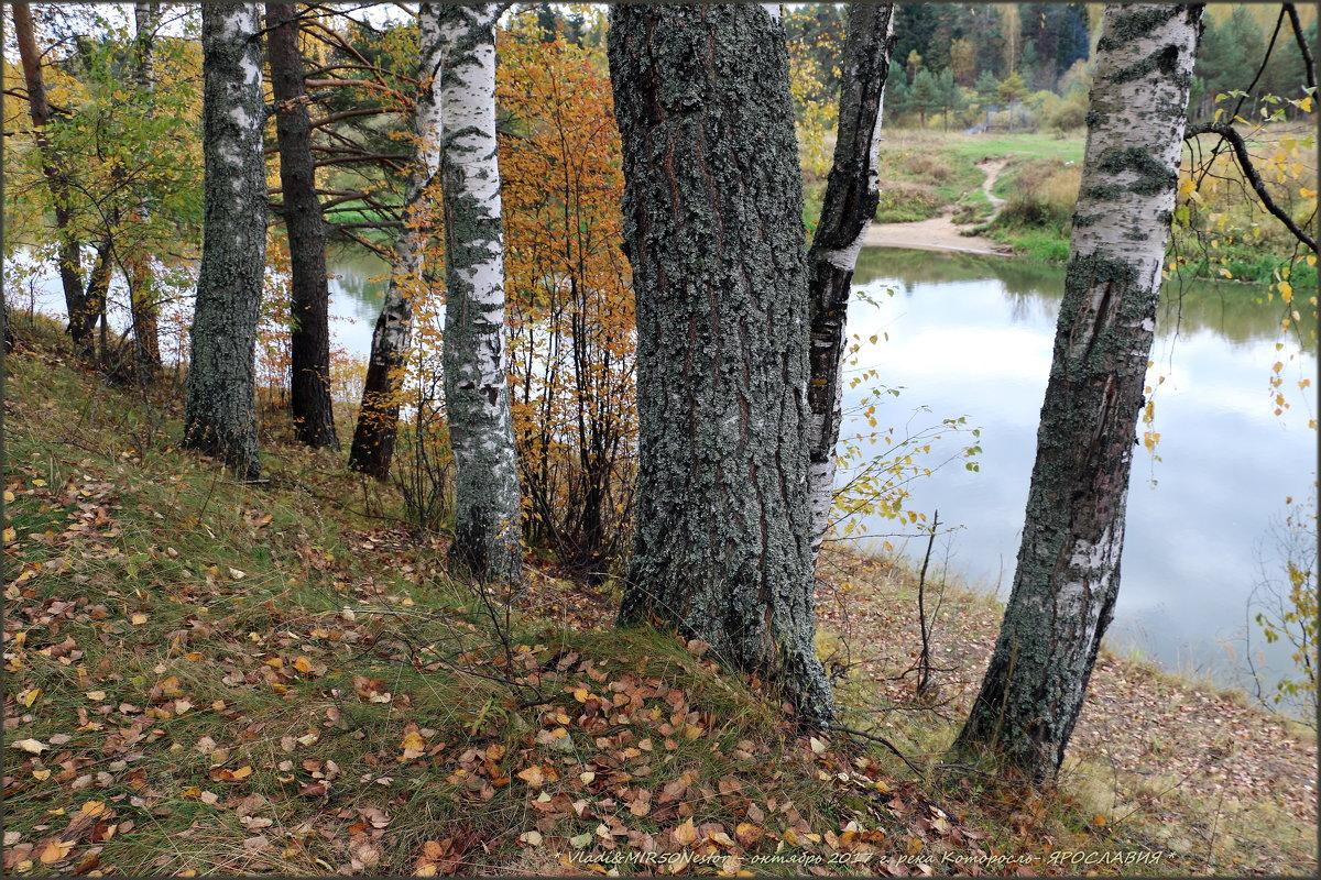 Я хожу, грущу один: Осень рядом где-то. Жёлтым листиком в реке утонуло лето./// - Владимир ( Vovan50Nestor )
