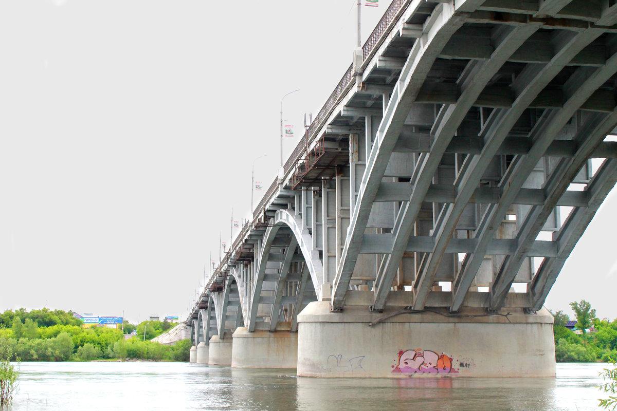 Мост - Надежда Смирнова