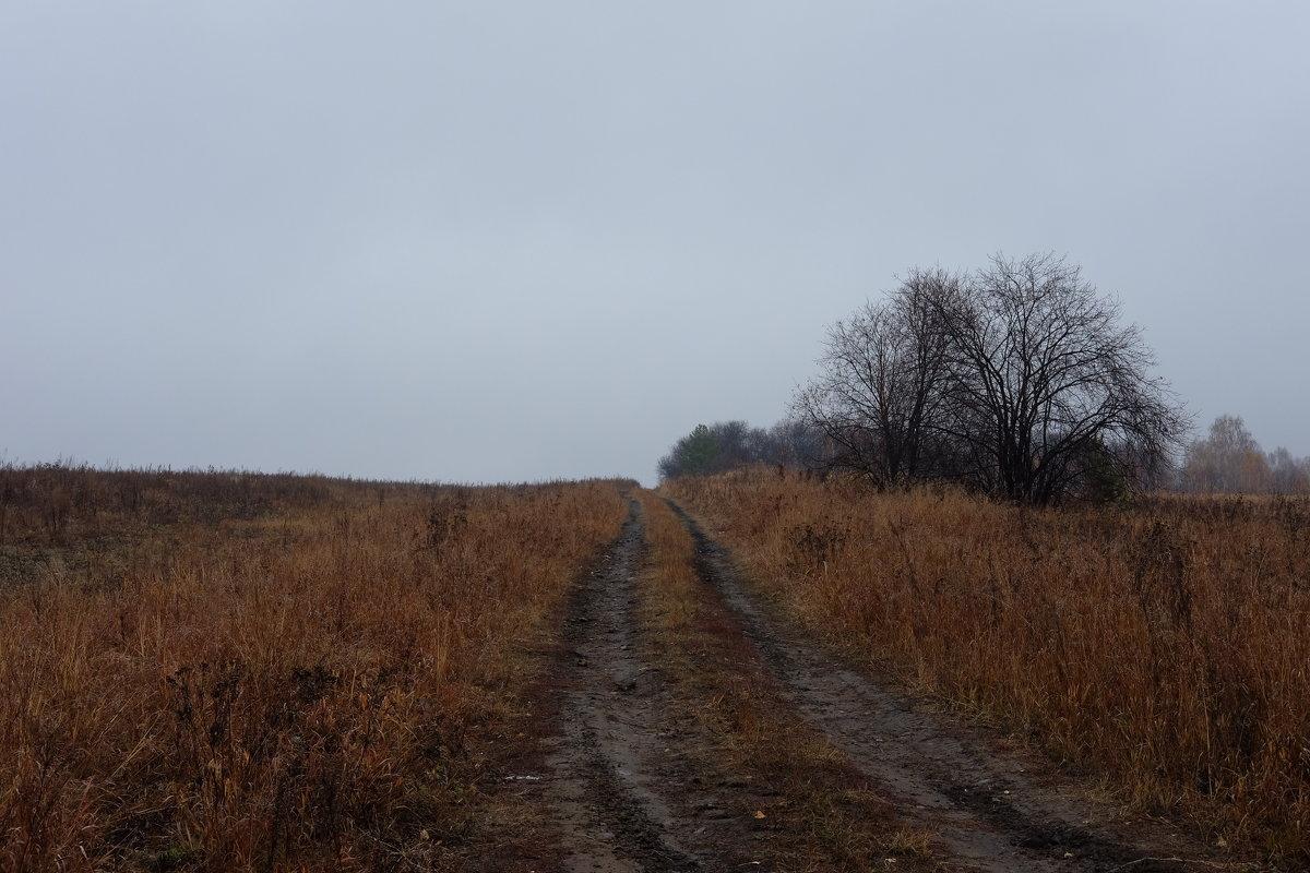 Дорога в осень - Евгений