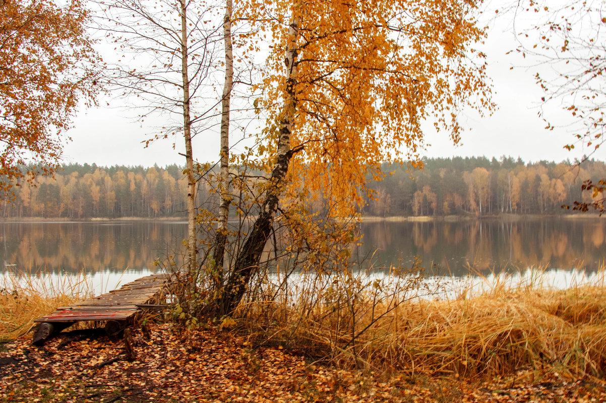 Осень на озере - Татьяна Баценкова