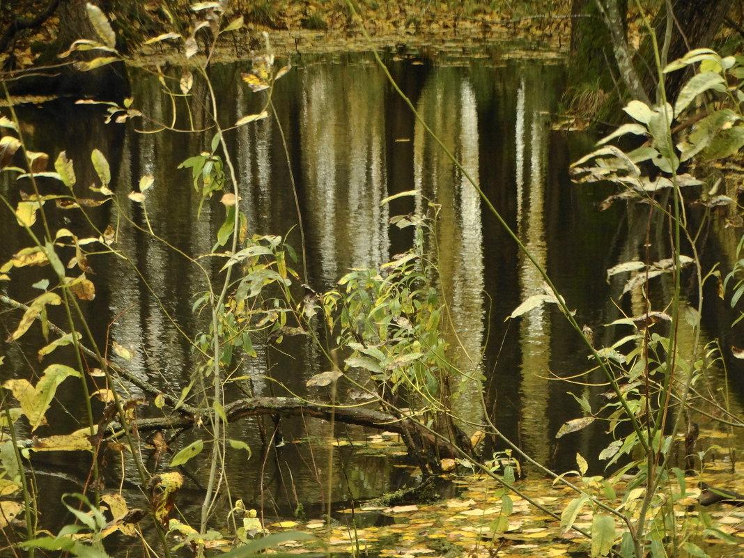 отражение..иллюзия..формы и силуэты - Михаил Жуковский