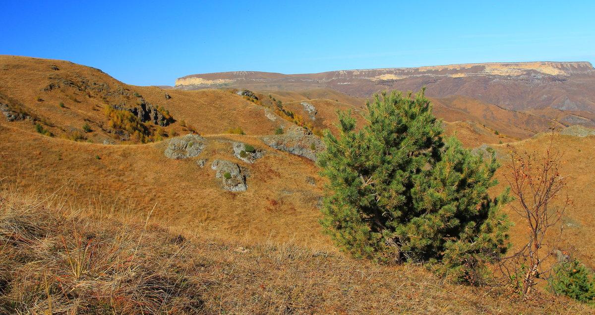 Осень на плато Бийчесын - Vladimir 070549