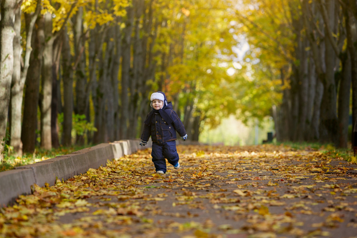 Осень - Alexander Moshkin