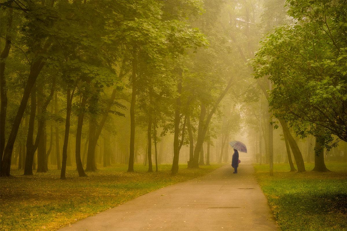 Гулять по лесу - Ксения Исакова