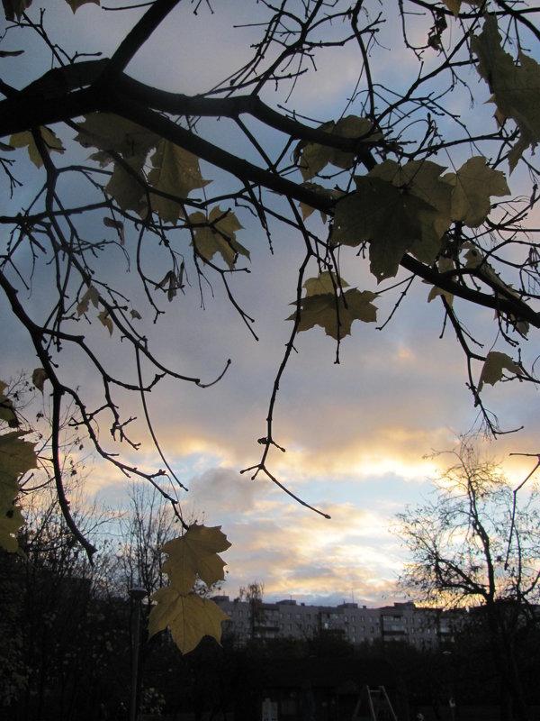 осень - Зинаида