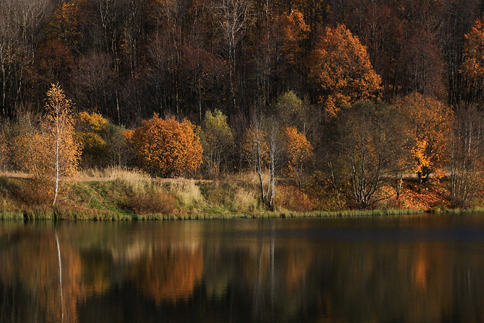 Осень - Татьяна Панчешная