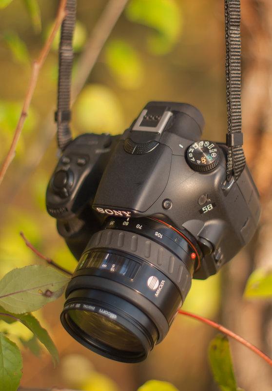 Фотокамера - Сергей Глянцев
