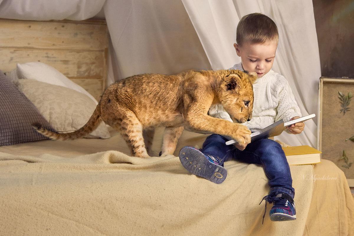 Любознательный львенок - Наталья Мячикова