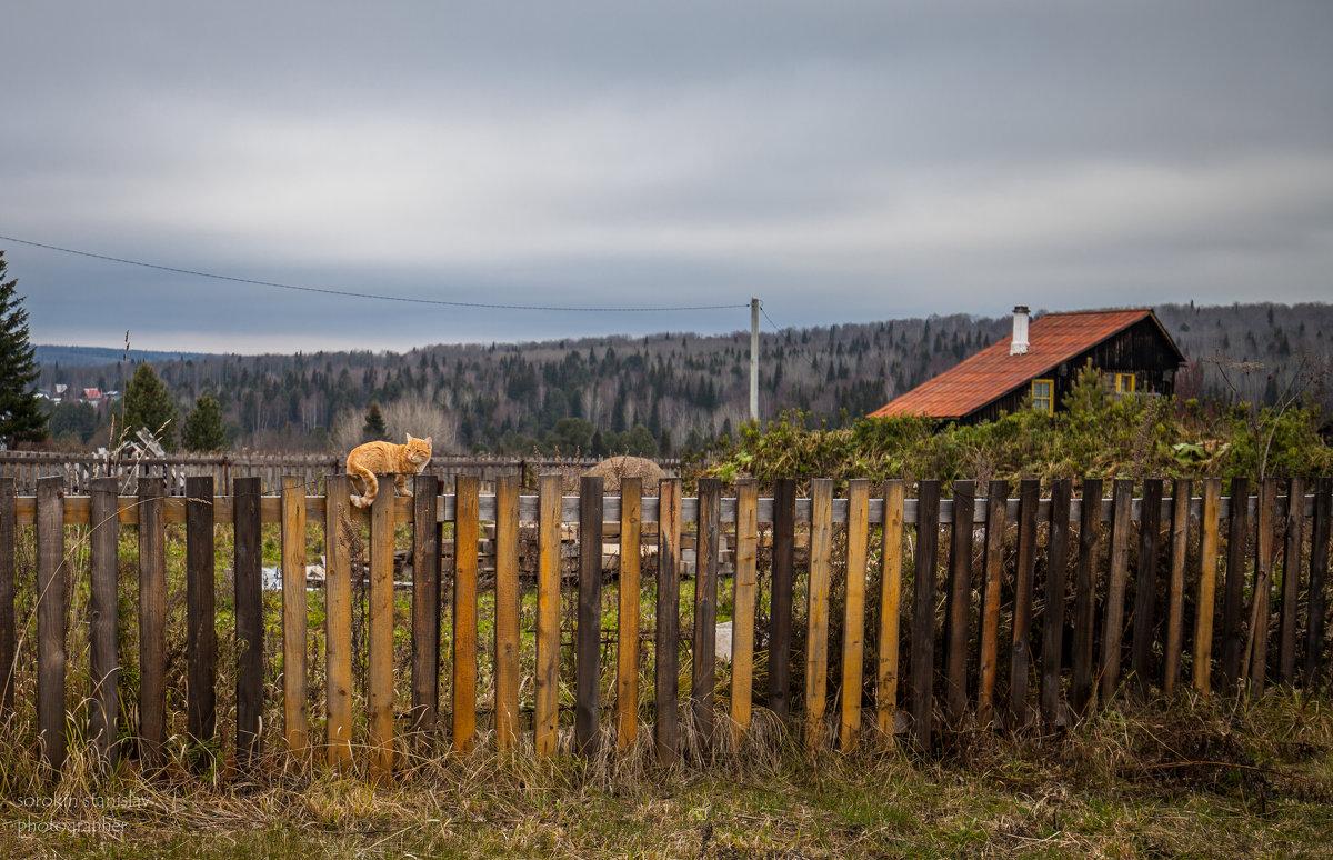 Октябрьская, деревенская. - Станислав Сорокин