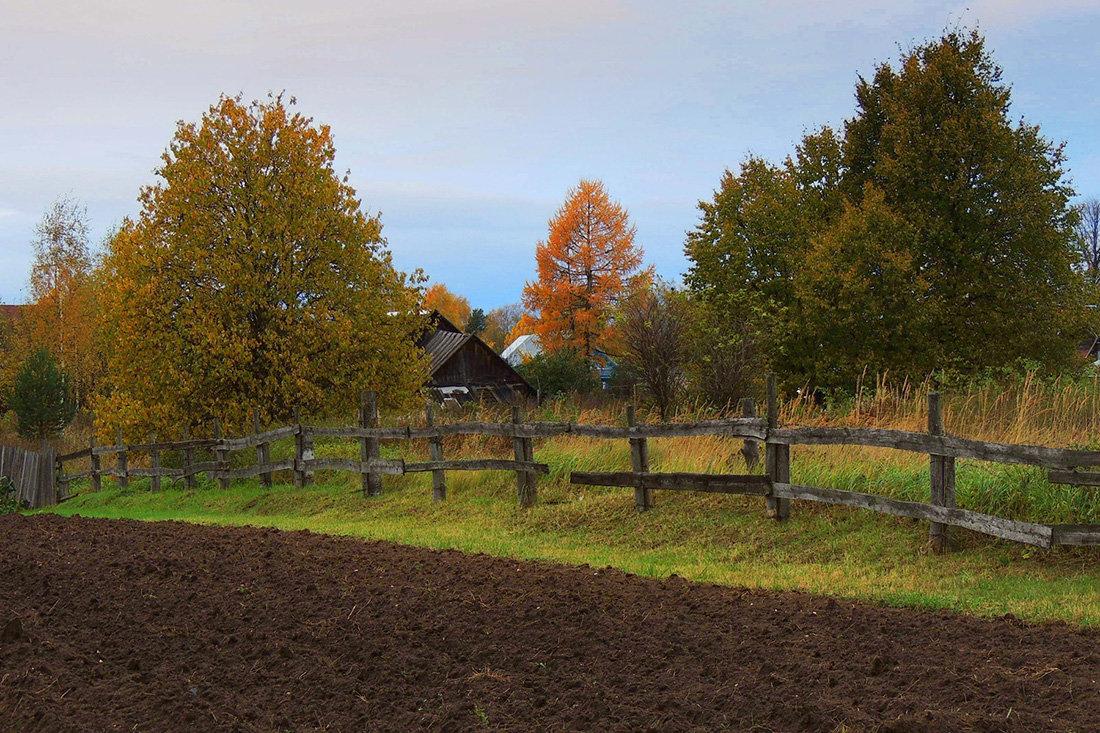 Осень в деревне - Павлова Татьяна Павлова