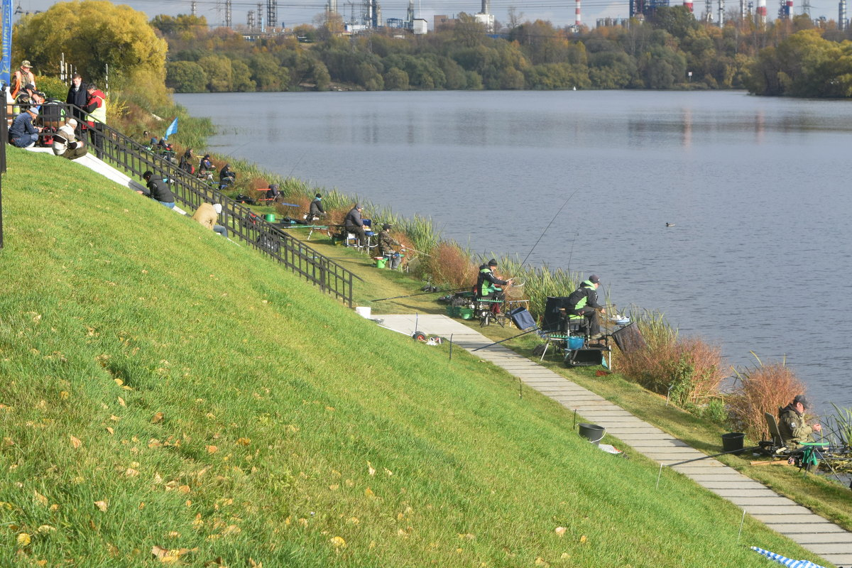Рыбаки вдоль берега Москвы реки. - Татьяна Помогалова