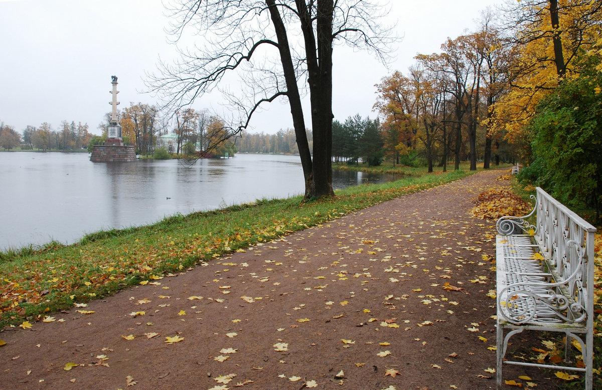 И 9 лет назад была такая же дождливая  осень..)) - tipchik