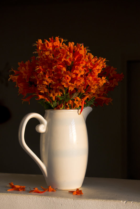 Оранжевый букет - Ефим Журбин