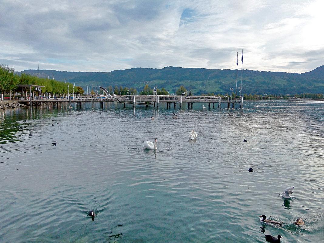Цюрихское озеро. - Наталья