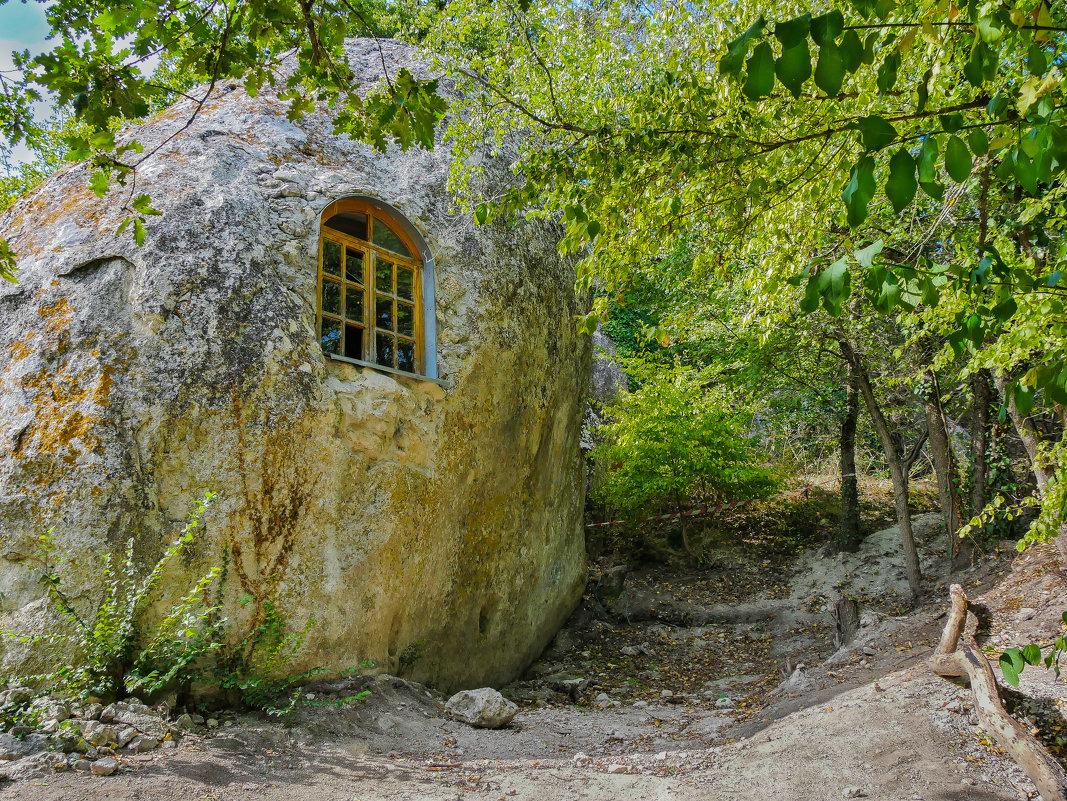 Дом, в котором живут гномы - Андрей Козлов