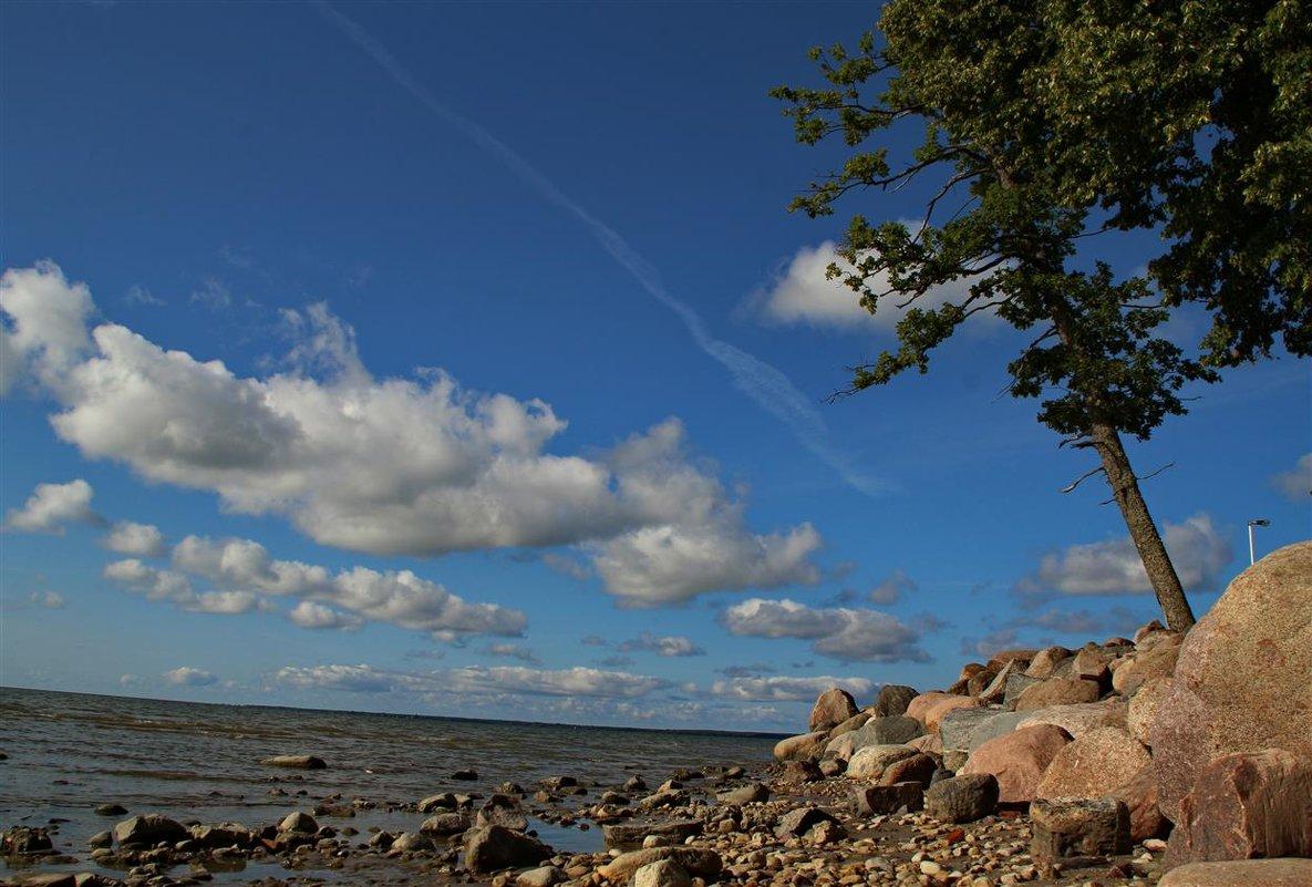 Прибалтийский берег - Татьянка *