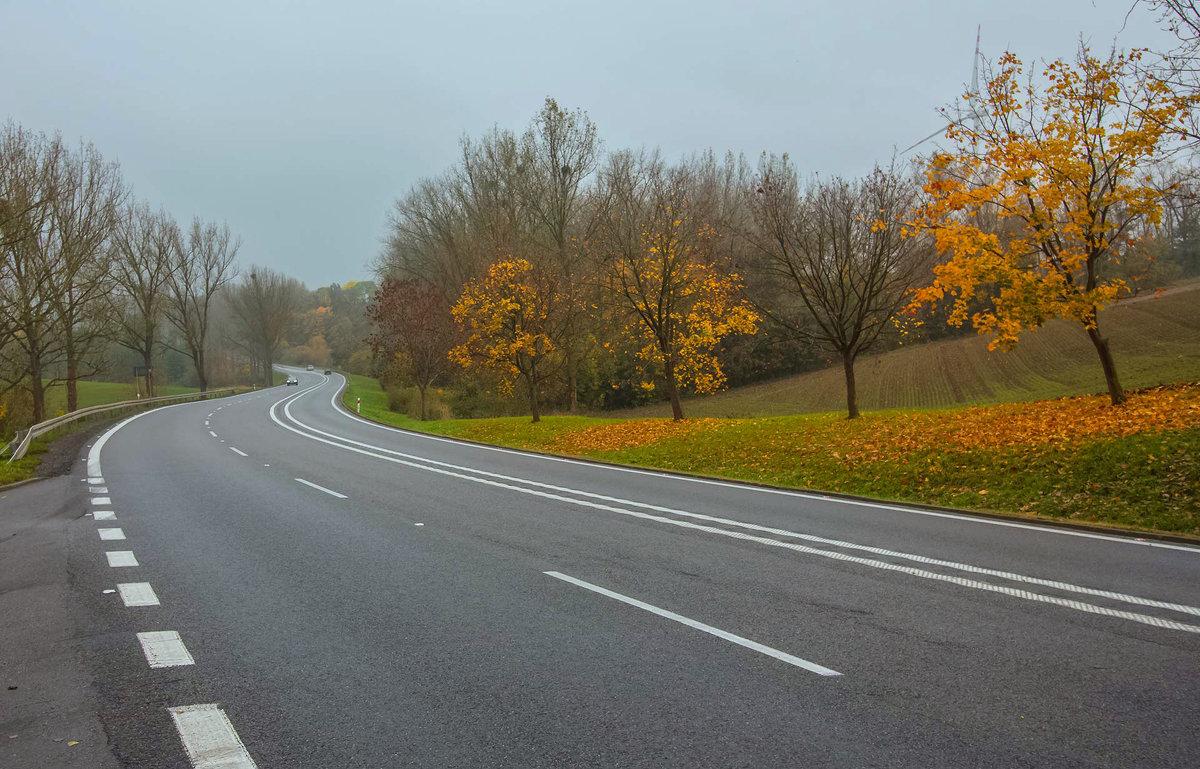 Осенняя дорога. Где-то в Польше. - Павел Дунюшкин
