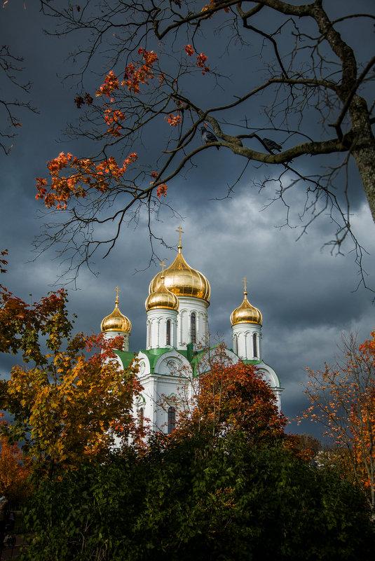 Екатери́нинский собо́р в Пушкине - Светлана Салахетдинова
